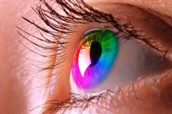 Gözdeki koni hücreler dalga boyuna duyarlı bir ışık alıcısı gibi çalışıyor. Bu hücreler retinada, gözün hemen arkasında. İnsanların çoğunda üç tip koni hücre var. Bazılarımızdaysa sadece iki tip. İki tip koni hücresi olanların büyükçoğunluğu erkek. Çünkü bu sayıyı belirleyen gen cinsiyet kromozomlarında yer alıyor.