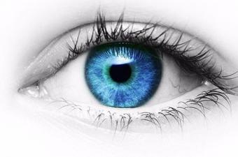 Dolayısıyla dünyayı siyah-beyaz görüyorlar. Gececil hayvanların büyük çoğunluğu sadece gece aktif olduklarından renkleri ayırt edebilme becerisine ihtiyaç duymazlar. Bunların da gözlerinde bir ya da iki tip koni hücresi mevcut. iki tip koni hücresi olanlar çift renkli görüşe sahip.