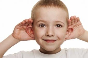 Kulağın dış kısmı, yani kulak kepçesi bölümü, duyulan sesin gücünü artırmak ve yerini tespit edebilmek için bu şekilde gelişti. Örneğin yüzünüzü sabit bir noktadan yayılan sese doğru dönüp kafanızı hızlıca sağa sola çevirirseniz duyduğunuz sesin değiştiğini görebilirsiniz.