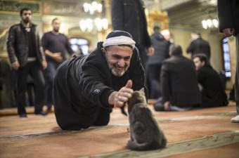 """İstanbul Üsküdar'daki Aziz Mahmud Hüdayi Camisi'nin kapılarını sokak kedilerine açarak, İslam dininin şefkat ve merhametine vurgu yapan imam Mustafa Efe, örnek davranışıyla hem cemaatin hem de sosyal medya takipçilerinin takdirini topladı. """"Kedi dostu imam"""" olarak anılmaya başlananan Efe'nin görev yaptığı camiye sabah ezanıyla giren, namaz sırasında etrafta dolaşan ya da bir kenarda kıvrılarak uykuya dalan, hatta yavrularını tek tek minbere taşıyan kediler, cemaat tarafından da benimsendi."""