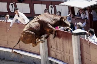 """İspanya'nın başkenti Madrid'deki boğa güreşi arenası Las Ventas'da düzenlenen """"Goyesco"""" festivalinde, çeşitli ülkelerden matadorlar arenaya çıktı."""