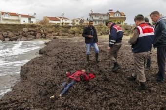 Anadolu Ajansı Gözüyle 2016  Balıkesir'in Ayvalık ilçesine bağlı Altınova Mahallesi açıklarında göçmenleri taşıyan botun batması sonucu 24 kişi yaşamını yitirdi.