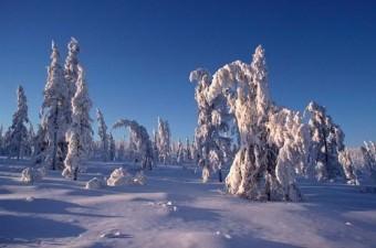 Verkhoyansk'ta ulaşım gerçekten zor. Öyle ki civarda hiç karayolu yok. (Yapılmasına gerek de yok herhalde, çünkü ertesi gün bel boyu karla kaplanır).