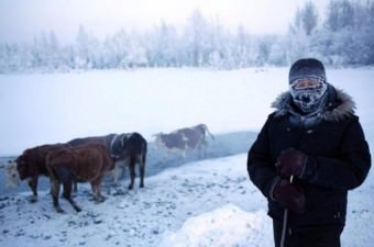 """Rusya'nın Kuzey Kutbu'na en yakın köyü Oymyakon, adını konumuna oranla sıcak sularından alıyor. Rusça'da """"Donmayan Su"""" anlamına gelen bölgeye 1930'lu yıllara kadar geyik sürülerinin su ihtiyaçlarını karşılamak için indiği biliniyor."""