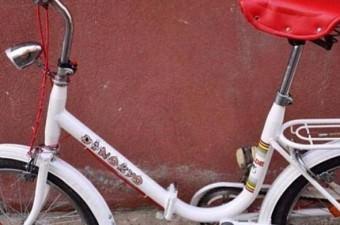 Pinokyo Bisiklet