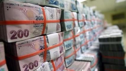 Türkiye'ye 10 yılda 100 milyar TL yatırım