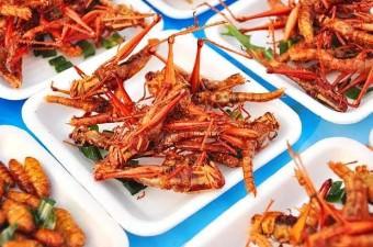 Dünya üzerinde 2 milyar insan düzenli diyetlerinin bir parçası olarak böcek yerler.