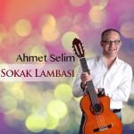 Ahmet Selim - Tutamadım